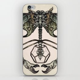 Spinal Tap iPhone Skin