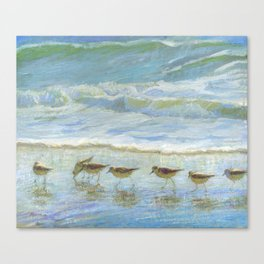 Sandpipers, A Day at the Beach Canvas Print