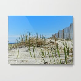Cape Cod Dunes Metal Print