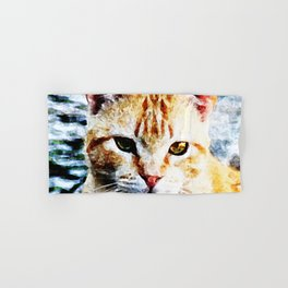 Young Yellow Cat Hand & Bath Towel