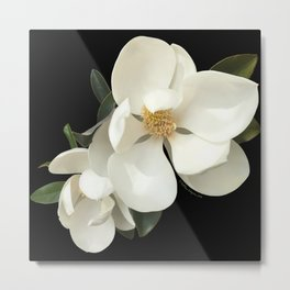 PURITY OF SPRING Metal Print