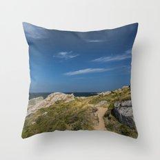 The trail  - Beach Sea Ocean Island Denmark Summer Throw Pillow