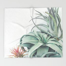 Air Plant Collection Throw Blanket