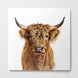 Cute Higland Cattle  Metal Print