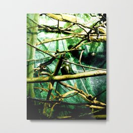 """Monkey Business"" Metal Print"