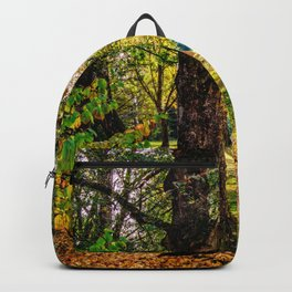 Concept nature : Manuf modus ad lacum Backpack