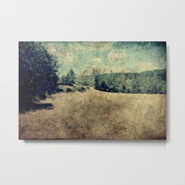 Vintage landscape Metal Print