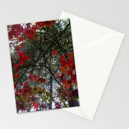 Beautiful Trees / 18 Stationery Cards