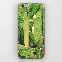 Southwest Desert Cactus iPhone Skin