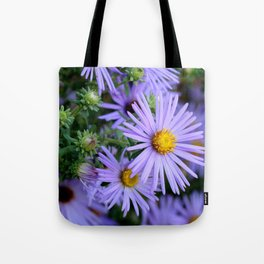 Hardy Blue Aster Flowers Tote Bag
