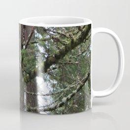 The Old Doug Fir Coffee Mug