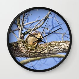 Squirrel in Nature Wall Clock