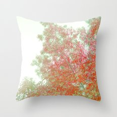 Orange Frosted Throw Pillow