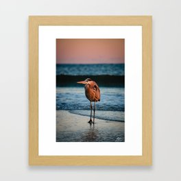 Hank the Heron Framed Art Print