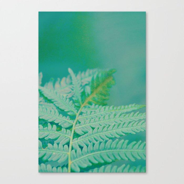 #182 Canvas Print