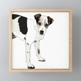 Jack Russell Terrier Dog Framed Mini Art Print
