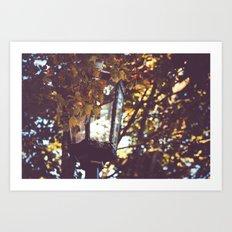 autumn leaves, lamp post Art Print