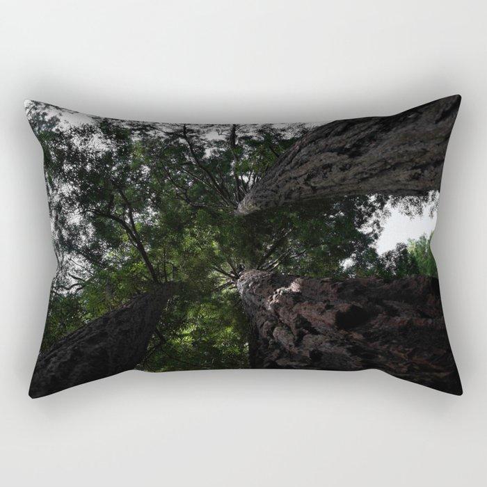 Looking up at the Redwoods Rectangular Pillow