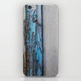 005 iPhone Skin