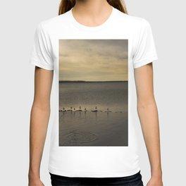 Segulls on the lake T-shirt