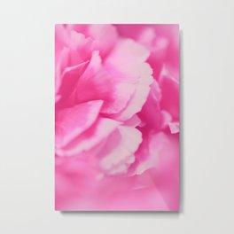 Hot Pink Rose Petals Metal Print