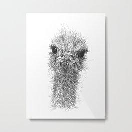 Obstinate Ostrich Metal Print