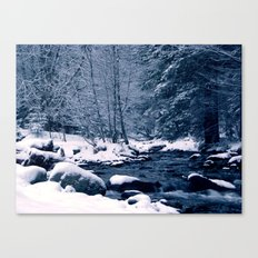 Perfect winter Canvas Print