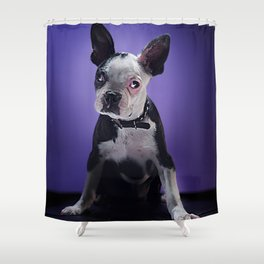 Super Pets Series 1 - Super Bugsy Shower Curtain