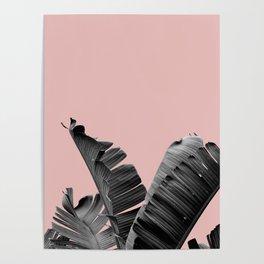 Banana Leaf, Tropical Poster