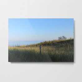 Point Beach State Forest Metal Print