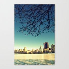 Frozen shadows Canvas Print