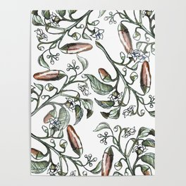 Hot Peppers Botanical Drawing Poster