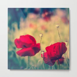 Keokea Poppy Dreams Metal Print