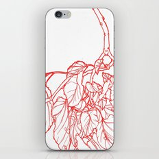 Red Branch iPhone & iPod Skin
