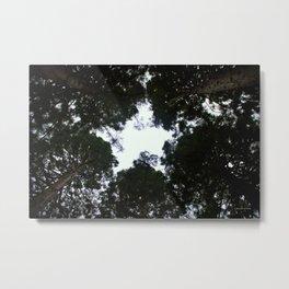 Star Trees Metal Print