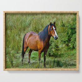 Beautiful Bay Horse In A Grassy Field Serving Tray