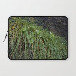 Dew Covered Coastal Plants on the Cliffs Laptop Sleeve