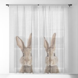 Rabbit - Colorful Sheer Curtain