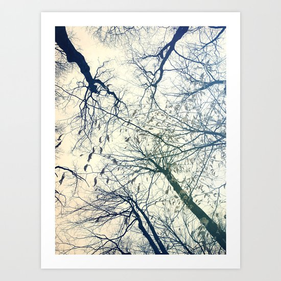 The Sky Above Art Print