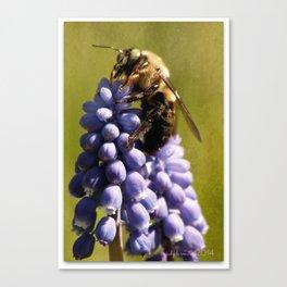 Mine!  says bee Canvas Print