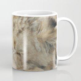 Lion_2014_1202 Coffee Mug