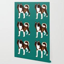 American akita inu teal Wallpaper