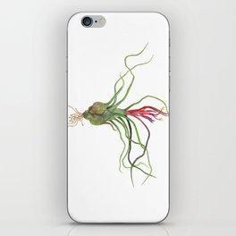 Twisty Tillandsia iPhone Skin