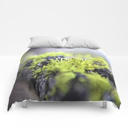 Mossy thoughts Comforters