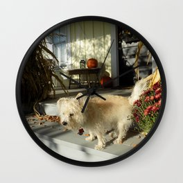 Harvest Pup Wall Clock