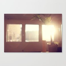 view from my window . ii Canvas Print