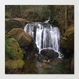 beautiful whatcom falls (square) Canvas Print