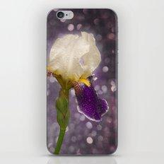 Rain drops Iris iPhone & iPod Skin
