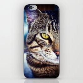 Bengal Tom Tabby Cat Portrait iPhone Skin