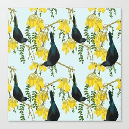Tuis in the Kowhai Flowers Canvas Print